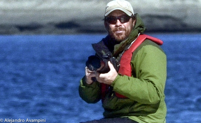 Stephen Jhonson whale photographer
