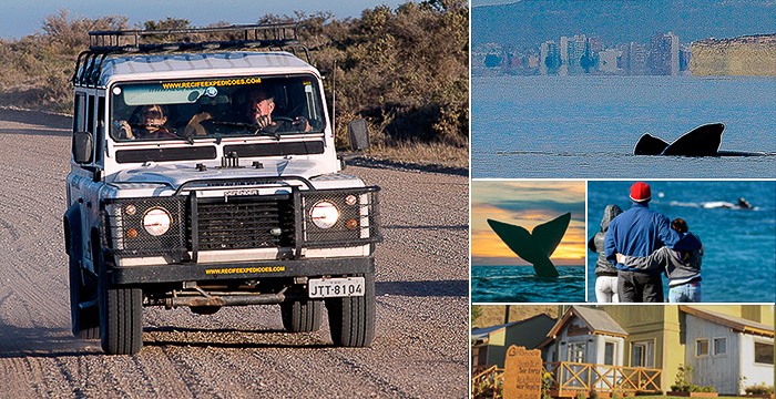 How to get to El Doradillo from Puerto Madryn Peninsula Valdes Patagonia Argentina
