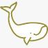 whales in puerto piramides madryn peninsula valdes
