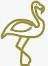 Oiseaux de la Péninsule Valdés