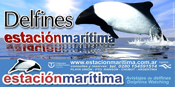 dauphin commerson - Union beach Chubut