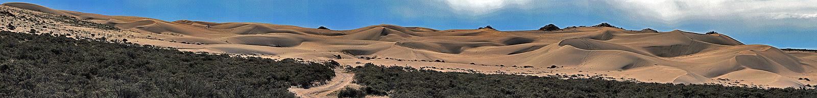 Dünen von Pardelas in Halbinsel Valdes