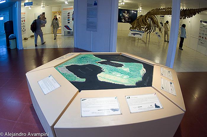 Isthmus Ameguino Museum Karte der Halbinsel Valdes