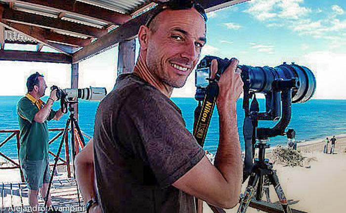 Photographer Orcas Season