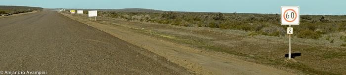Rota 2 Peninsula Valdes Estrada de cascalho