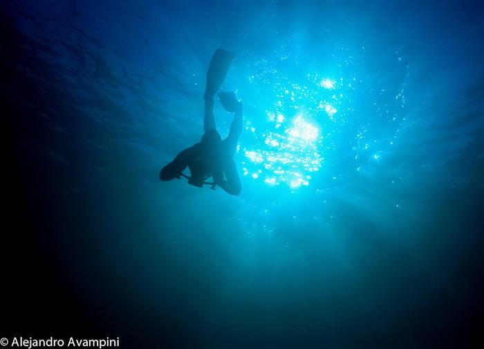 Dive in Puerto Piramides