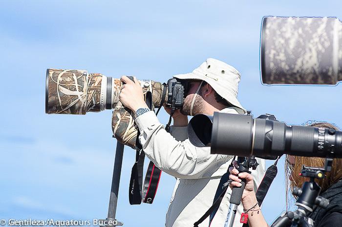 Fotograaf orka´s Valdes schiereiland