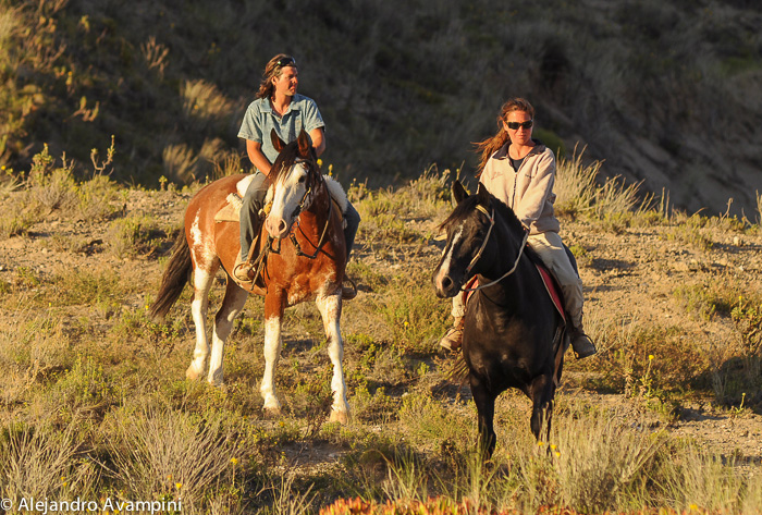 Horse-back riding in the Valdes Peninsula, from Puerto Piramides