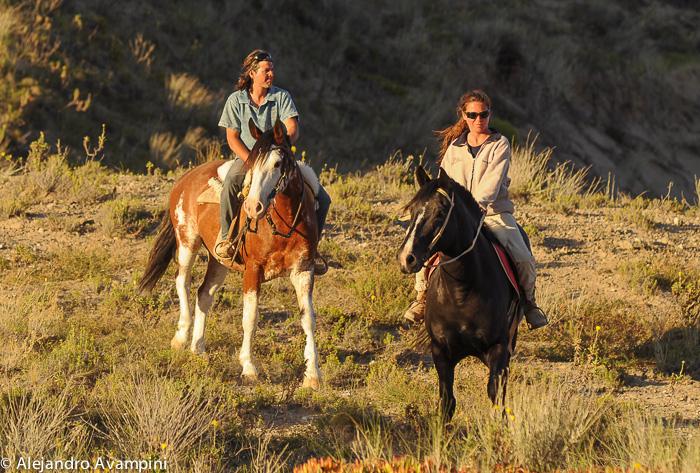 Cabalgatas por Peninsula Valdés, desde Puerto Pirámides Patagonia Argentina