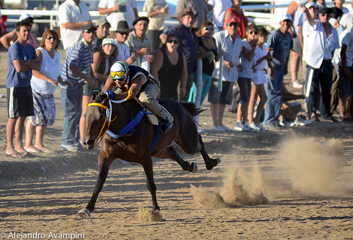 Horse racing in Puerto Piramides
