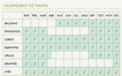 fauna_calendar peninsula valdes