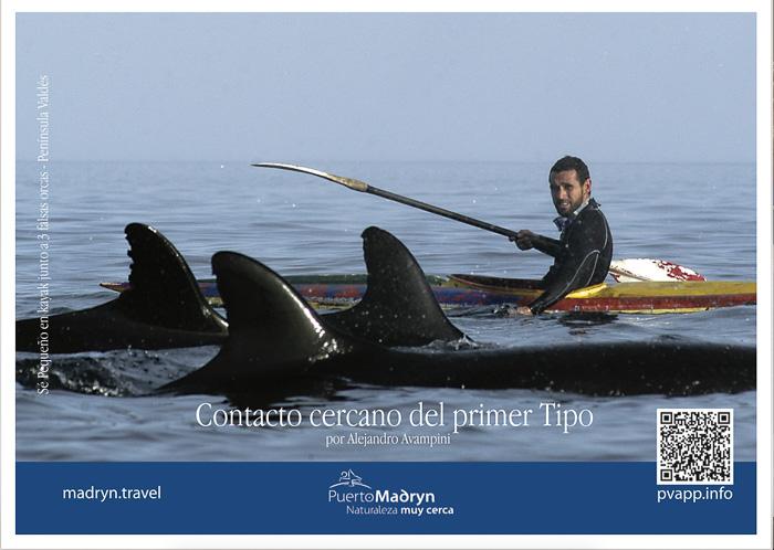 Postal de Puerto Madryn Peninsula Valdes