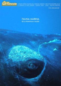 Fauna Marina de Península Valdés Patagonia Argenina