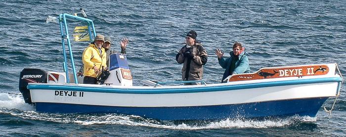 fotografiar y filmar en el mar de Peninsula Valdes