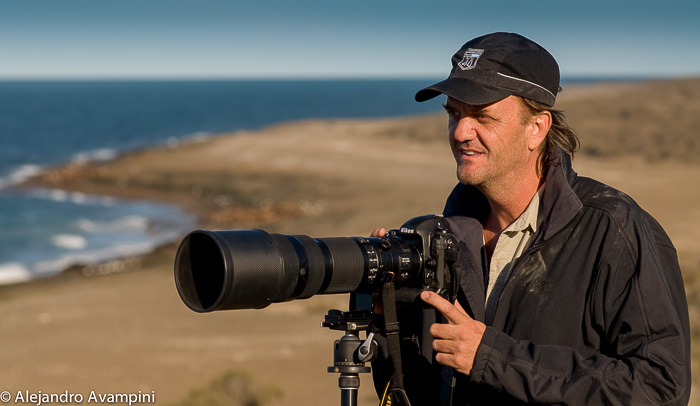 photographer orca stranding on the beaches of Punta Norte