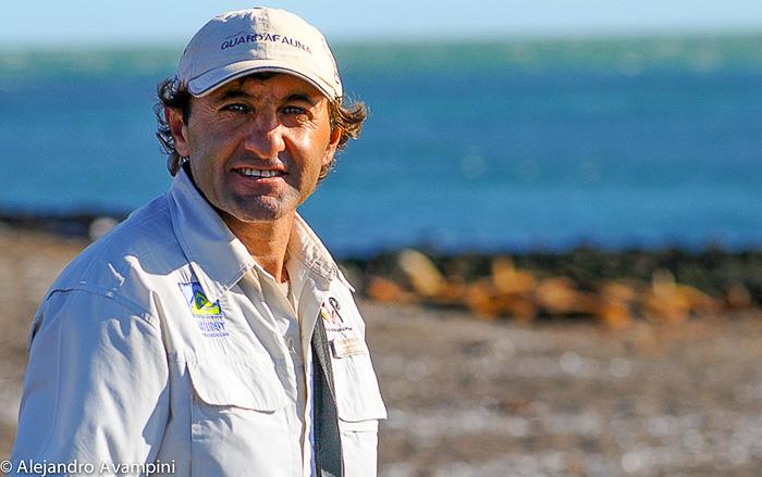 Boswachter van het Park in Punta Norte Documentaire Orka het schiereiland Valdes