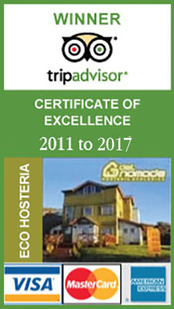 certificate hotel excellence quality
