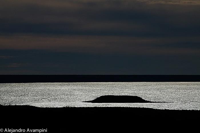 Bird Island Valdes Peninsula - Argentine Patagonia