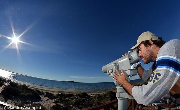 Isla de los Pájaros vista desd el mirador - Peninsula Valdes