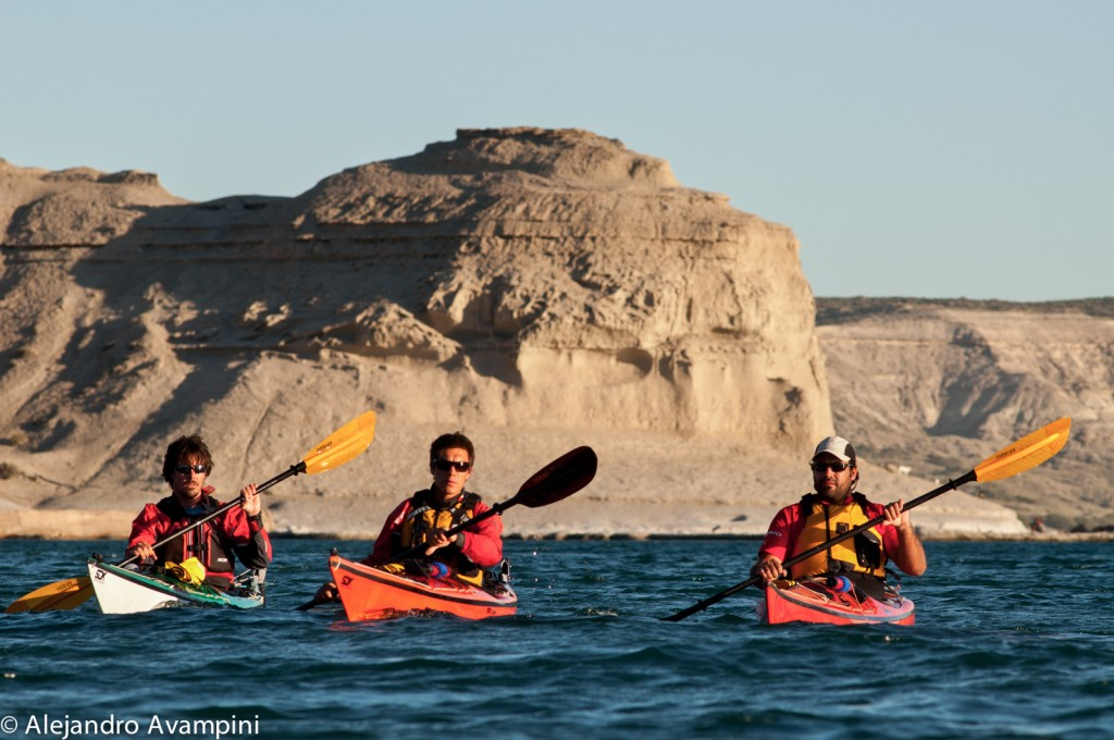 Kayak en Puerto Piramides - Puerto Madryn