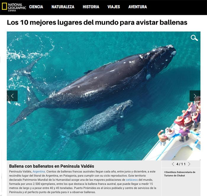 mejor lugar del mundo para ver ballenas