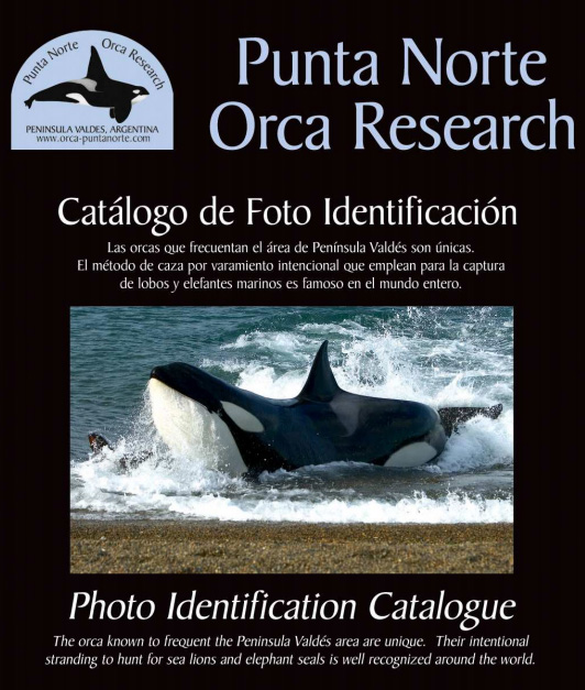 Orcas Catálogo de Peninsula Valdes