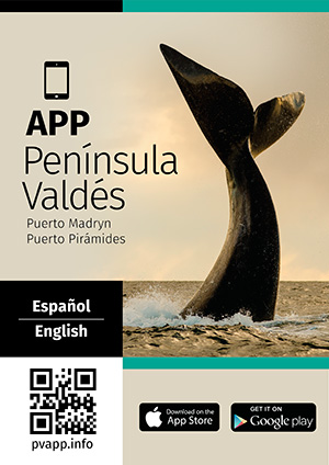Tour Guide APPS Valdes Peninsula