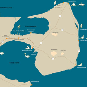 Valdes Peninsula Maps Tours, Attractions and TIPS