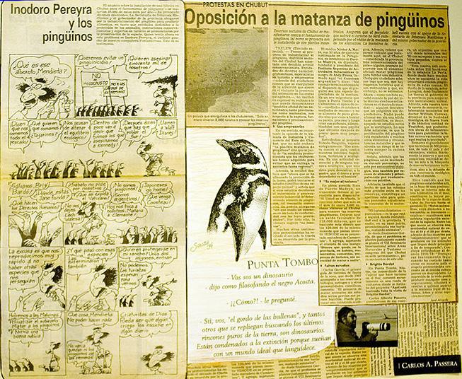 prensa y batalla de los pinguinos en Punta Tombo Patagonia Argentina