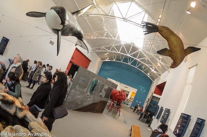 Puerto Madryn - Ecocentro - Museum das Meer.