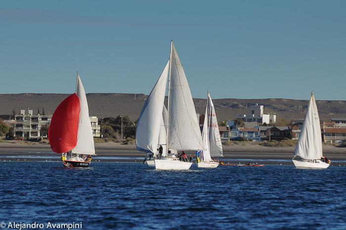 Regata de veleros en Puerto Madryn - Aventura patagónica