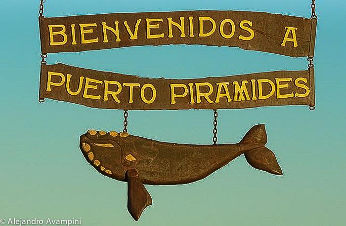 Puerto PIrámides - Peninsula Valdes