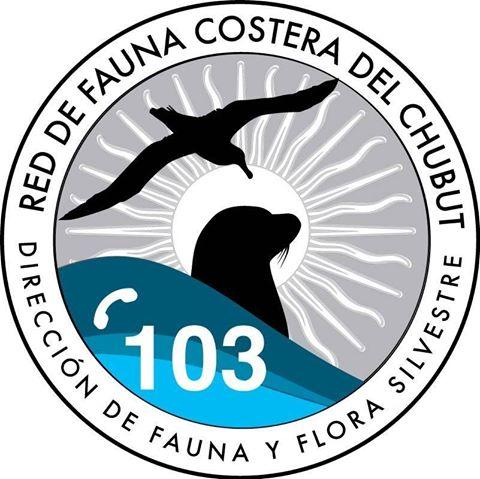 Rescate de fauna marina en Peninsula valdes y Chubut