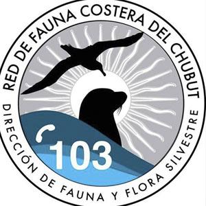 Rescate de fauna costera en Chubut