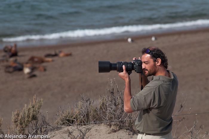 Roberto Bubas in Punta Norte in Orcas Season