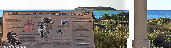 Saint Exupery -Vogelinsel Halbinsel Valdes - Patagonien Argentinien