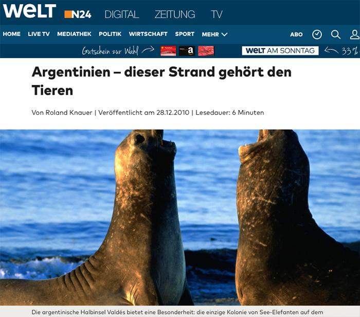Argentinien – dieser Strand gehört den Tieren Halbinsel valdes