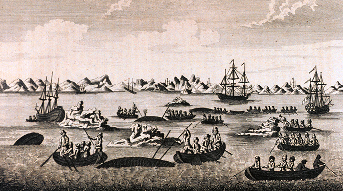 Drawing shows 1800 where whaling