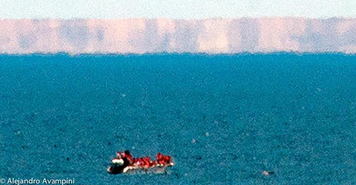 Whale Watching - Puerto Piramides